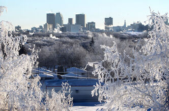 View of downtown Winnipeg through trees covered in  hoar frost on Garbage Hill Thursday morning.